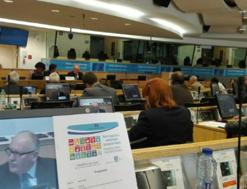 Next steps for a sustainable European future: Reforming Europe- Implementing SDGs