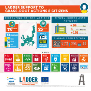 Do it locally ladders grassroots action ladder ladders grassroots action ccuart Gallery